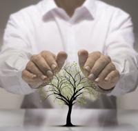 Medio ambiente, Calidad y PRL
